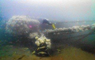 ace diving site
